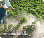 UN warns of global collapse due to pesticides; Agenda 21 is pushed as solution